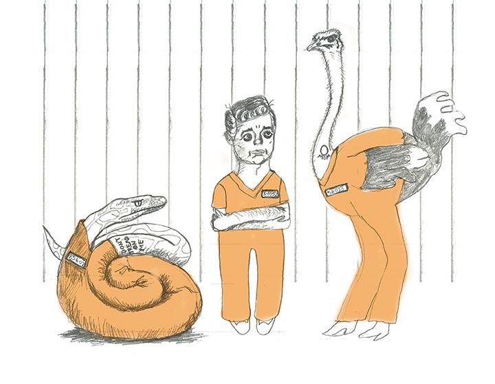 Manafort_Prison